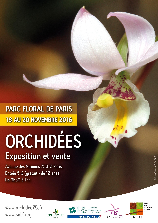 Orchidées, une exposition-vente au Parc Floral de Paris - Extérieurs ...
